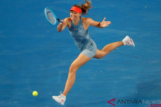 Data dan fakta Maria Sharapova vs Caroline Wozniacki