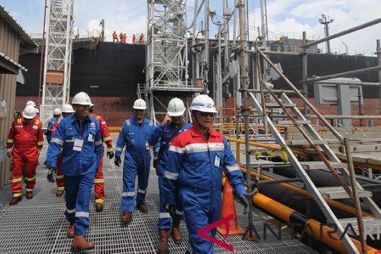 Harga minyak turun karena persediaan AS mengecewakan pasar