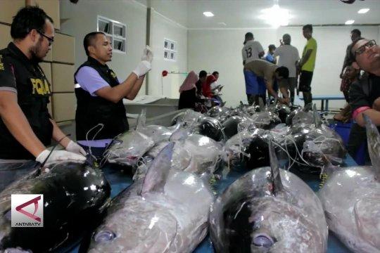 Kontrol mutu dan kesehatan ikan agar ekspor meningkat