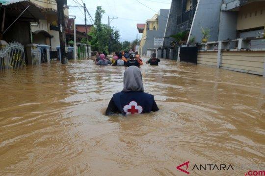 Tambang, alih fungsi hutan memperbesar dampak banjir Sulawesi Selatan