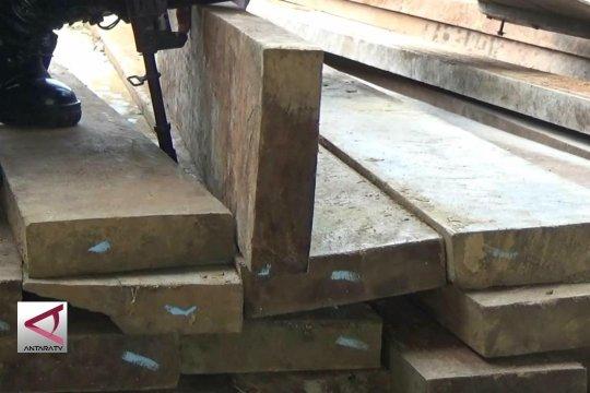 2 Orang angkut 8 ton kayu ilegal di Bireun