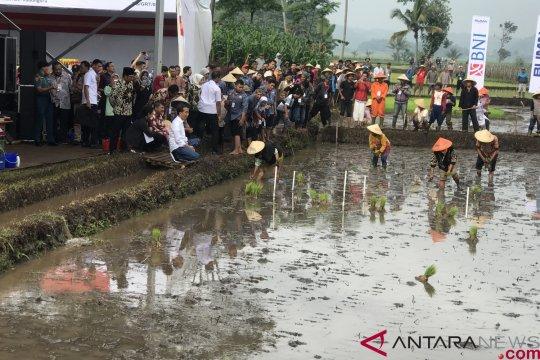 Presiden ajak ngobrol petani Garut di pinggir sawah