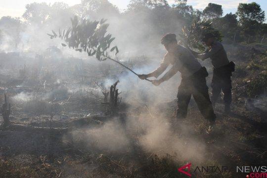 Karena ulah manusia, Belitung Timur sembilan kali kebakaran hutan di 2018