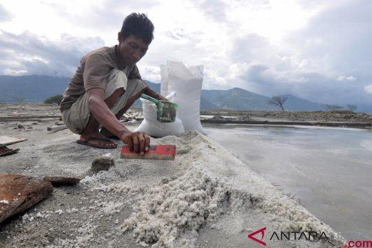 LIPI dorong penghitungan lahan pertanian hilang di Palu