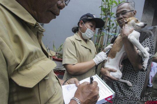 Razia anjing-kucing liar disarankan tiga kali setahun