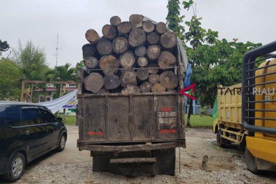 Pemodal dan pembalak liar Suaka Margasatwa Kerumutan Riau diringkus