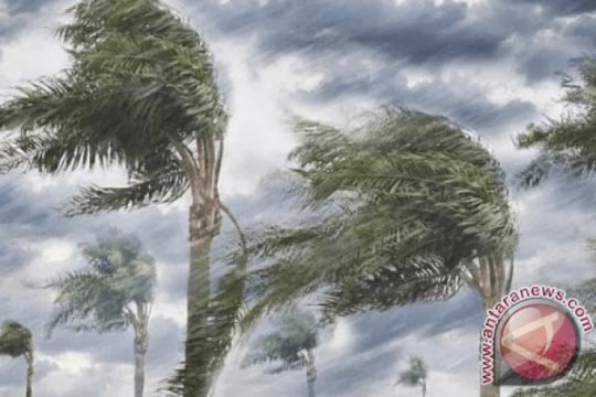 BNPB: Angin kencang tanda pancaroba