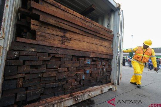Penyelundupan kayu dari Papua