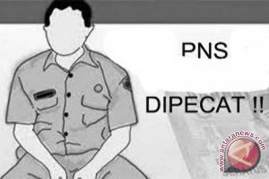PNS peserta pilkada tidak mundur, diberhentikan dengan tidak hormat