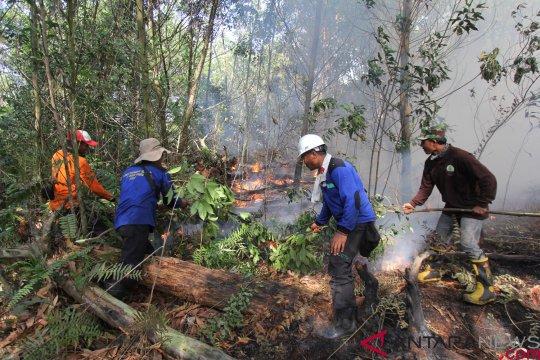 40 ha hutan lindung di Batam terbakar