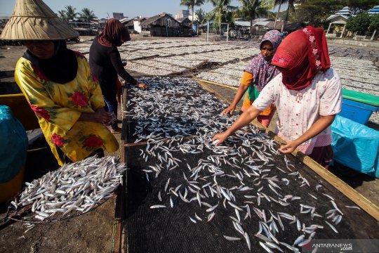 Mencari rezeki di pasar ekspor teri asin