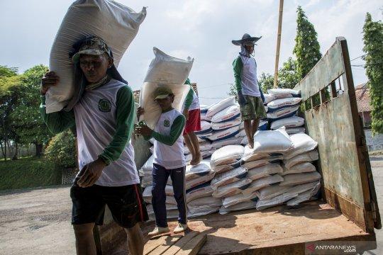 Distribusi pupuk subsidi di Cianjur 4500 ton per bulan