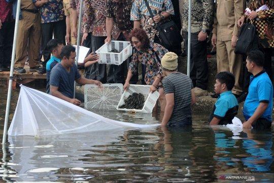 Menteri Susi sebut ironi, konsumsi ikan masyarakat Jambi rendah