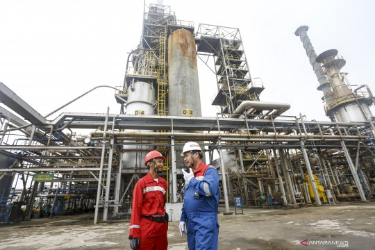 DEN ungkap cara Indonesia bisa bebas impor energi