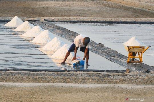 KKP: data akurat suplai-permintaan garam kunci impor