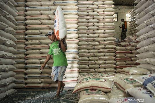 Kementan: potensi produksi beras hingga Maret 14,29 juta ton