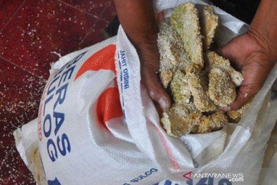 CIPS sebut kasus beras busuk karena distribusi tidak baik