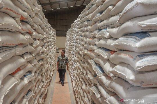 Sejumlah komoditas pangan di Jateng alami surplus