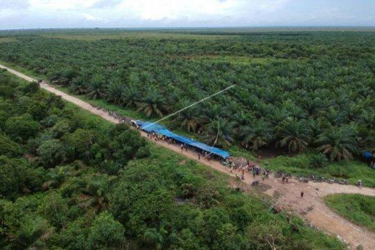 KSP percepatan penyelesaian 60 konflik agraria perkebunan
