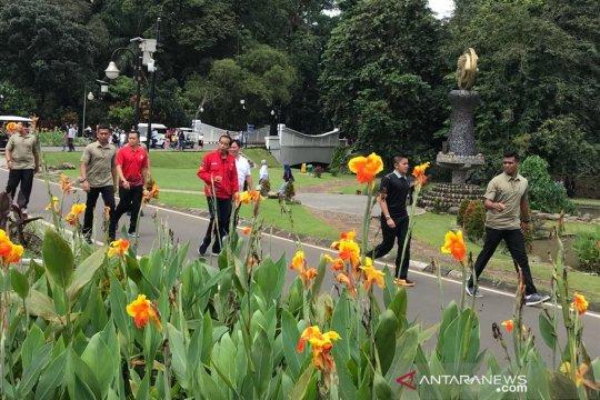 Jelang debat Presiden Jokowi lari pagi di Kebun Raya Bogor