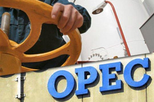 Harga minyak naik tipis karena OPEC cenderung abaikan tekanan Trump