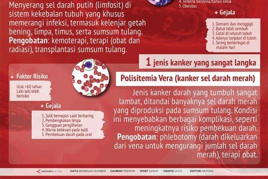 Apa itu kanker darah?