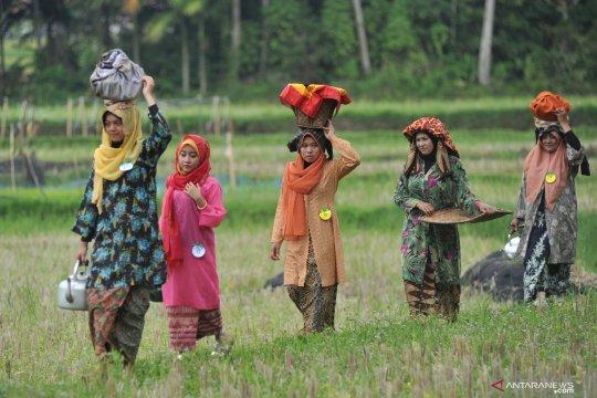 Kubu Gadang gelar peragaan busana tradisional di pematang sawah