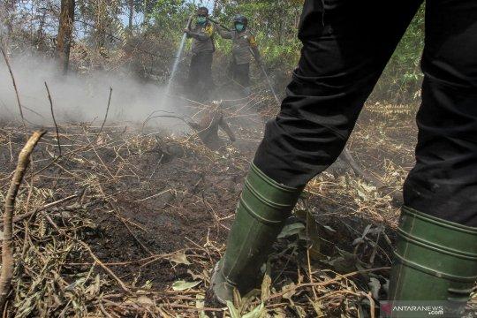 Api yang membakar lahan gambut Nagan Raya 80 persen sudah dipadamkan