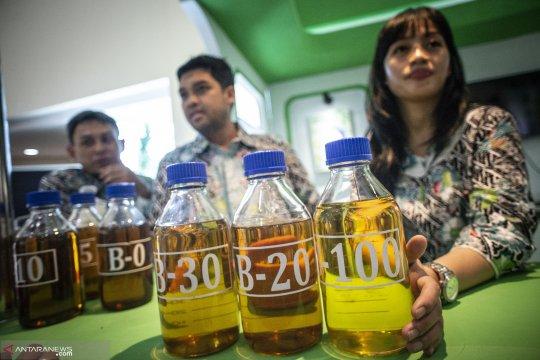 GAPKI: penyerapan biodiesel strategi hadapi diskriminasi sawit UE