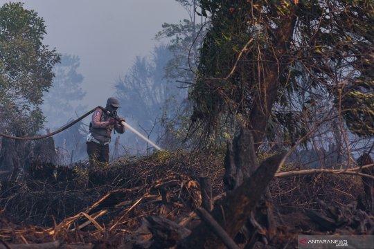 Chevron ikut padamkan kebakaran di area konsesinya