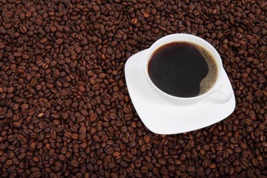 Minum kopi setiap jam sehari? Ini kata pakar