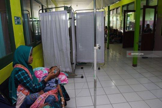 259 warga Pekanbaru terserang DBD