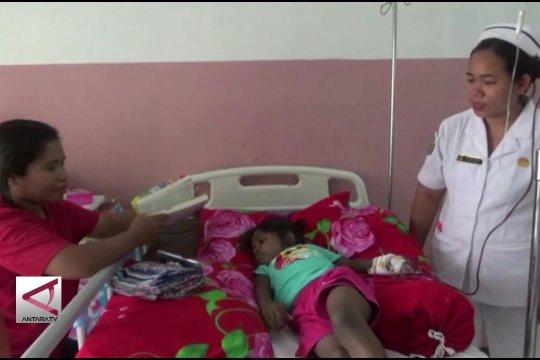 70 Warga Papua terjangkit DBD di 6 kabupaten