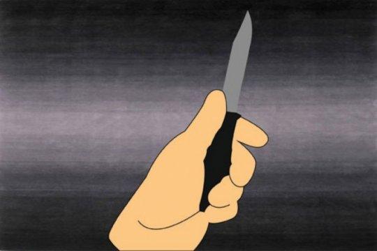 Polisi tangkap penumpang yang coba bunuh sopir angkot di Garut