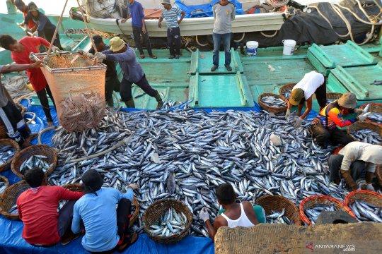 Dampak pemberantasan pencurian ikan diharapkan sampai ke nelayan