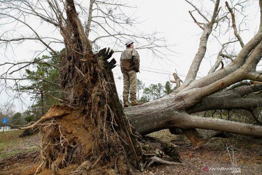 23 tewas akibat badai tornado di Alabama