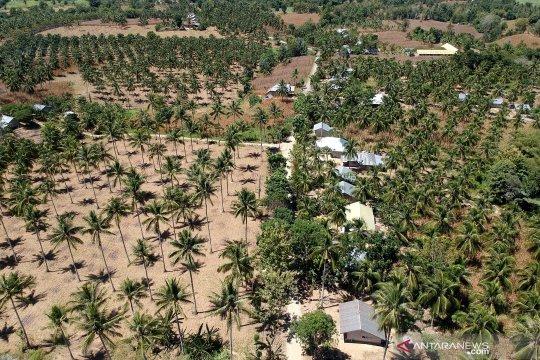 Kementerian Desa kejar investasi di sektor konektivitas