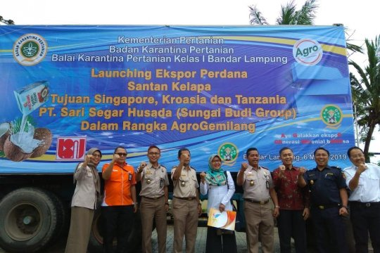 Santan kelapa asal Lampung diekspor ke tiga negara