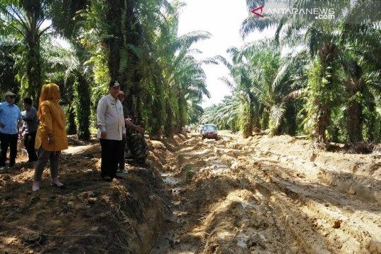 Wagub Sumbar  tinjau Jalan Pelabuhan Teluk Tapang