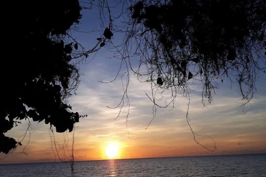 Pulau Maspari destinasi wisata baru unggulan Sumsel