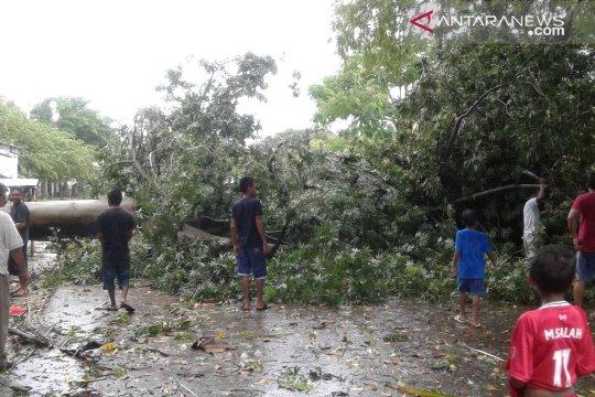 Angin kencang merusak 400 unit rumah di kota Kupang