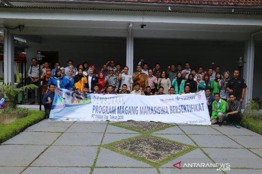 PT Timah - UBB gelar magang mahasiswa bersertifikat