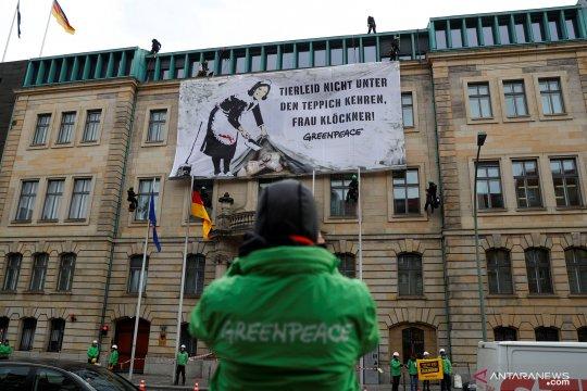 Aktivis Greenpeace gelar unjuk rasa di depan gedung Kementerian Federal Pangan dan Pertanian di Berlin, Jerman
