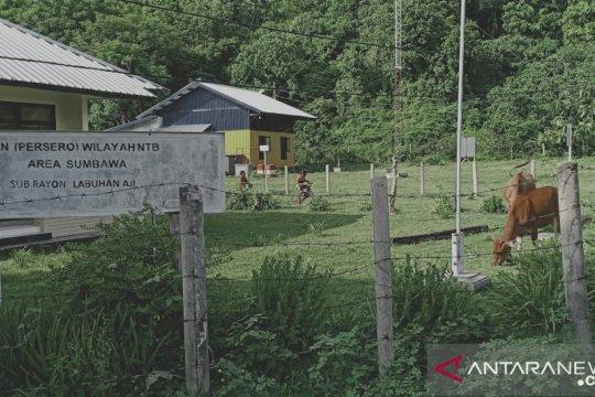 Masyarakat Pulau Moyo NTB sulit kembangkan perekonomian karena listrik