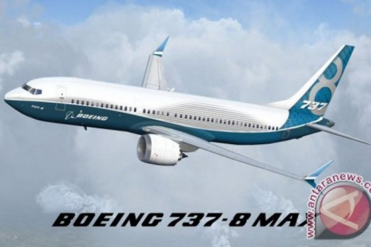 Pembekuan Boeing Max perlu diberi batas waktu, usul pengamat