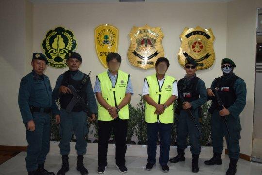 Tiga  bos kayu ilegal ditetapkan sebagai tersangka oleh KLHK