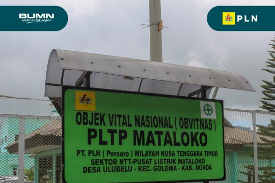 Pemerintah percepat pengembangan panas bumi Mataloko