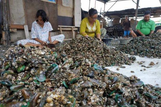 Nelayan kerang di Teluk Jakarta keluhkan limbah