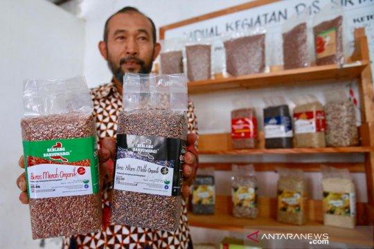 Indonesia ekspor beras premium asal Cianjur ke Singapura