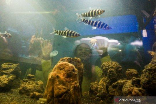 WWF dorong tata kelola air bijaksana peringati Hari Air Sedunia